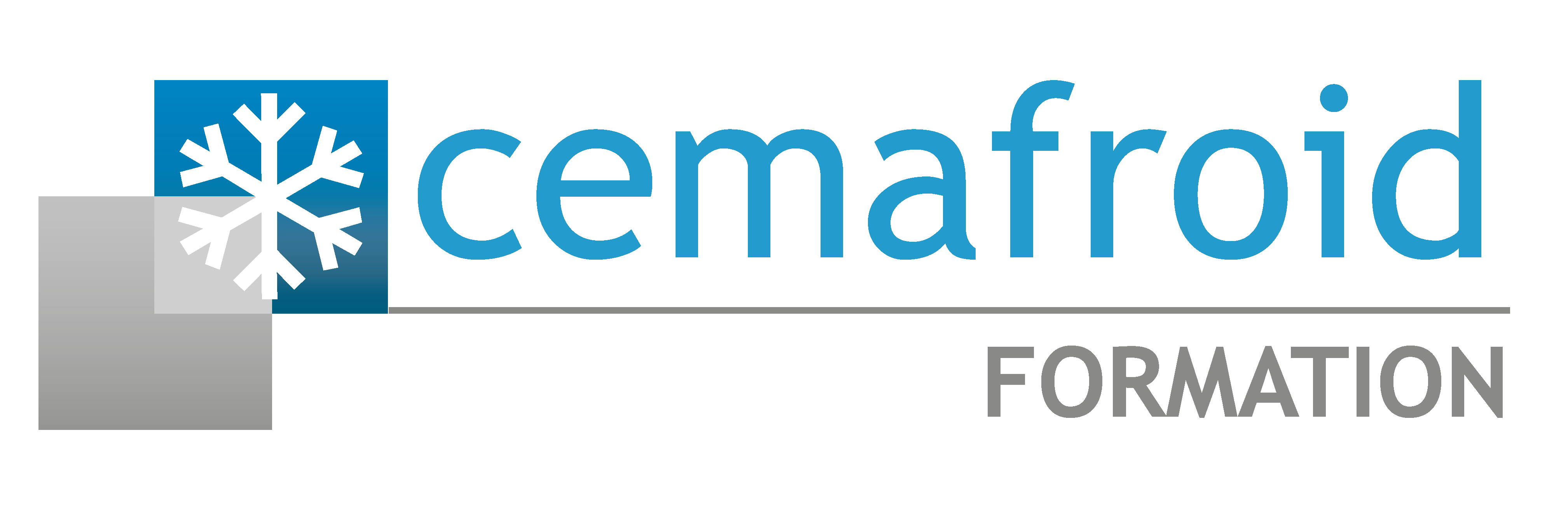 Cemafroid Formation chaine du froid  Alimentaire, Sante, Metrologie, Climatisation